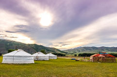 Mongolian yurts on central Mongolian steppe. Constructing a yurt called ger on central Mongolian steppe Stock Image