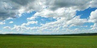 mongoliansikt Arkivbilder