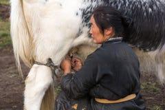 Mongolische Frau, die ein Yak in Nord-Mongolei milk Stockfotos