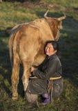 Mongolische Frau, die eine Kuh milk Lizenzfreie Stockfotografie