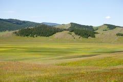 Mongolische Nordwälder und Steppen Stockfotografie