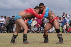 Mongolischer Ringkampf stockbild