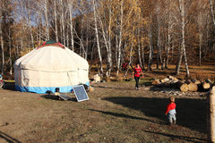 Mongolisk yurt Arkivfoton