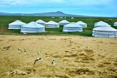 Mongoliska Ger på centrala Mongoliet arkivbilder