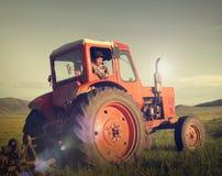 Mongoliskt bondeDriving Tractor Field Agicultural begrepp Royaltyfria Bilder