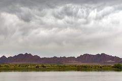 Mongoliskt dystert landskap Arkivfoton