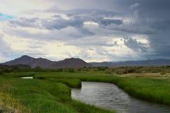 Mongolska natura w lecie Obraz Royalty Free