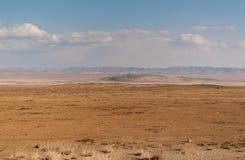 Mongolski dziki step zdjęcia royalty free