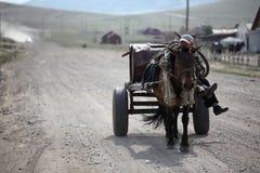 Mongoolse paard en kar Stock Afbeelding