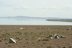 Mongoolse woestijn Stock Fotografie