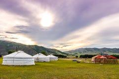 Mongoolse yurts op centrale Mongoolse steppe Stock Afbeelding
