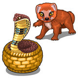 Mongoose and cobra. Vector animal isolated Stock Photos