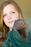 Mongoose rescued from muti trade. HOWICK - 26 FEBRUARY 2013: A juvenile grey mongoose rescued from the African muti trade is held by AFS volunteer Kim Claes at Royalty Free Stock Image