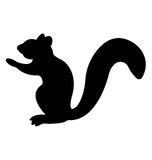Mongoose Silhouette. Royalty Free Stock Image