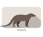 Mongoose standing and watching, vector illustration Stock Photos
