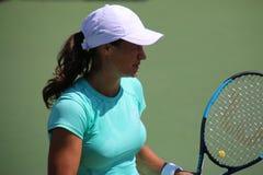 Monica Niculescu Fotografia Stock