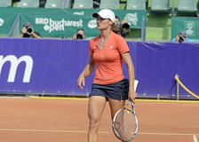 Monica Niculescu Royalty Free Stock Photography