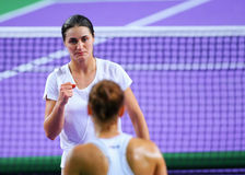 Monica Niculescu Royalty Free Stock Photo