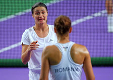 Monica Niculescu Royalty Free Stock Image