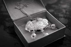 Monili d'argento Fotografia Stock Libera da Diritti
