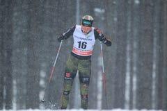 Monique Siegel - катание на лыжах по пересеченной местностей Стоковые Фотографии RF