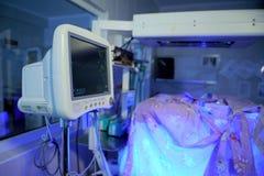 Monitor cardiaco en el sitio de la incubadora imagen de archivo