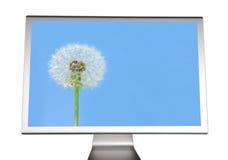 Monitor do computador Fotografia de Stock Royalty Free
