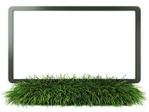 Monitor en hierba con Fotografía de archivo