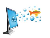 Monitor and gold fish Royalty Free Stock Photos