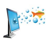 Monitor and gold fish Royalty Free Stock Photos