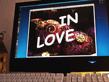 Monitor - light game - in love Royalty Free Stock Photo