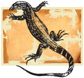 Monitor lizard. Hand drawing  - monitor, the lizard Royalty Free Stock Photos
