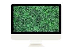 Monitor met groen gras Stock Foto's
