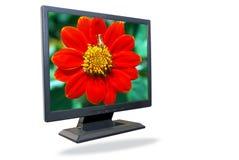 monitora lcd Zdjęcie Stock