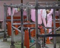 Monjas budistas en Myanmar Fotografía de archivo