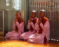 Monjas de las chicas jóvenes del rezo Foto de archivo libre de regalías