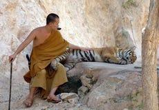 Monje budista con el tigre de Bengala, Tailandia, Asia, gato Imagen de archivo libre de regalías