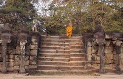 Monje budista en la terraza de los elefantes Fotografía de archivo