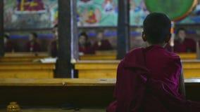 Monje budista joven almacen de video