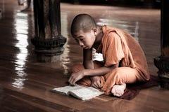 Monje del novato, Myanmar foto de archivo libre de regalías