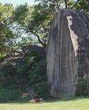 Monje durmiente en Mamallapuram y x28; Mahabalipuram& x29; Fotos de archivo libres de regalías