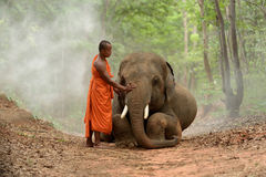 Monje y elefante Fotos de archivo