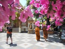 Monjes budistas en Doi Suthep, Chiang Mai imagen de archivo libre de regalías