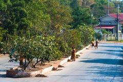Monjes budistas en el trabajo de la limpieza foto de archivo libre de regalías