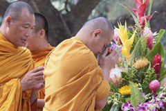 Monjes que ruegan Imagenes de archivo