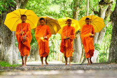 monk Fotografia de Stock