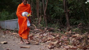 Monk alming and walking in the morning stock footage