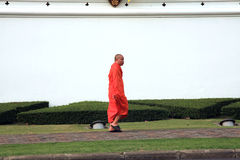 Monk - Bangkok  - Thailand Stock Images