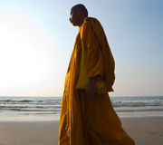 Monk on the Beach royalty free stock photo