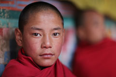 Monk, Bhutan. Young monk in a temple in Bhutan Royalty Free Stock Image